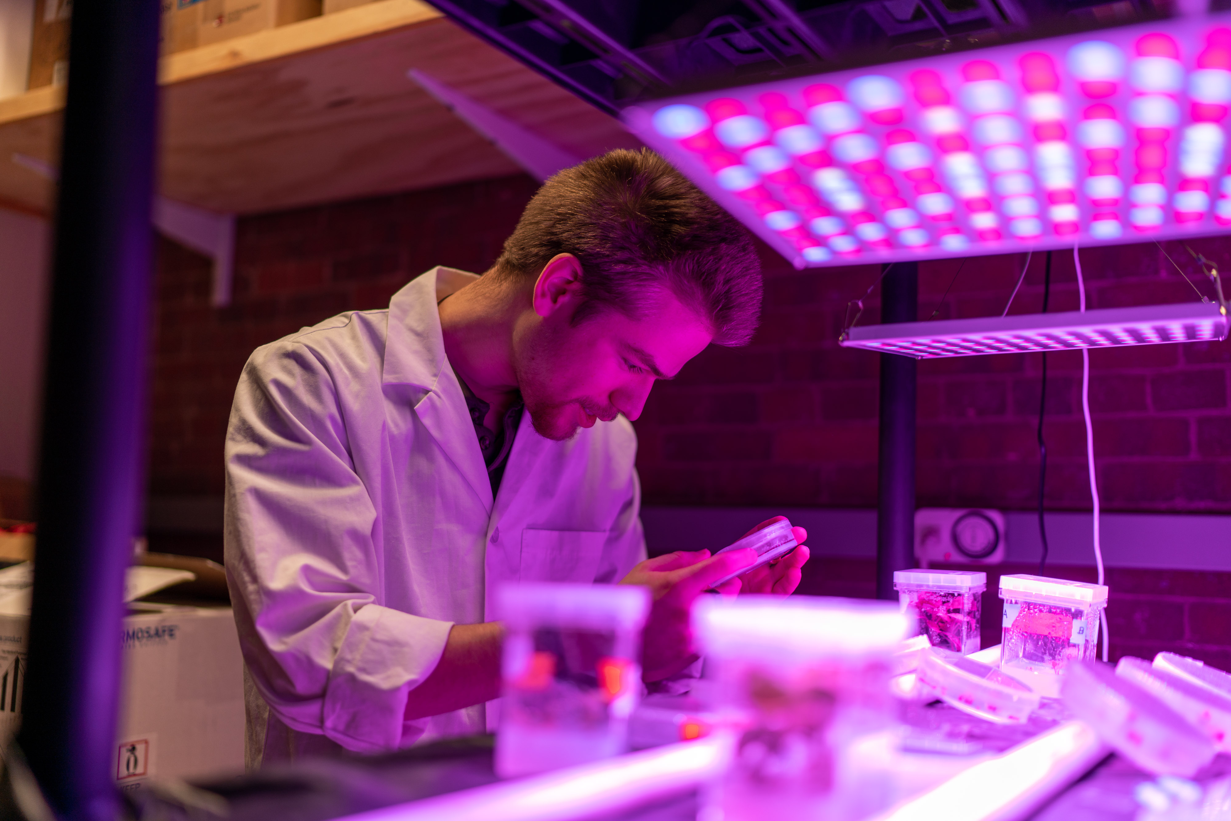 Biological sciences student in the lab