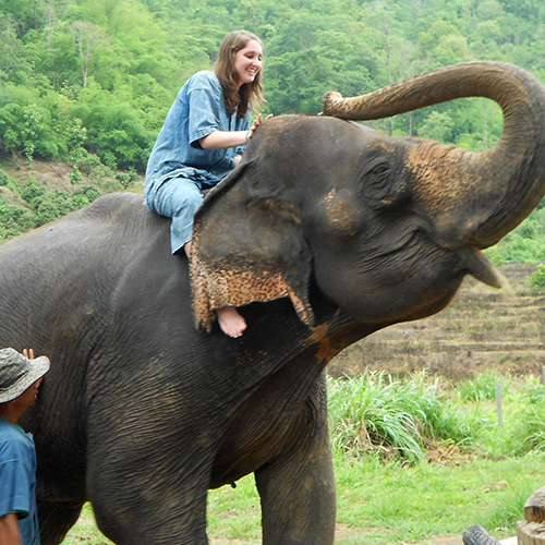 student sitting one elephant in Thailand