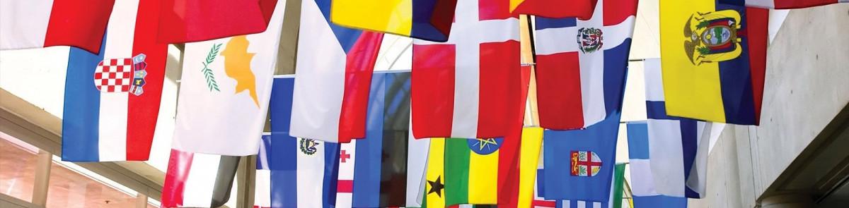 global studies minor